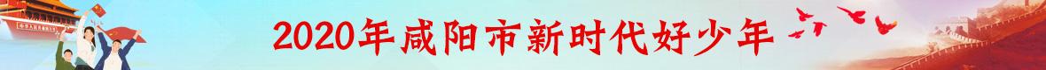 2020年(nian)咸陽市新(xin)時代好(hao)少年(nian)